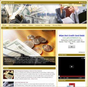 Debt Relief Niche Website