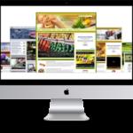 Health-Fitness Niche - Turnkey Website Package (5 Websites)