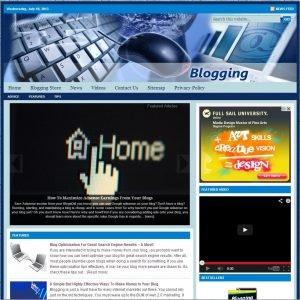 Blogging Niche Website