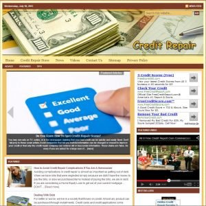 Credit Repair Niche Website