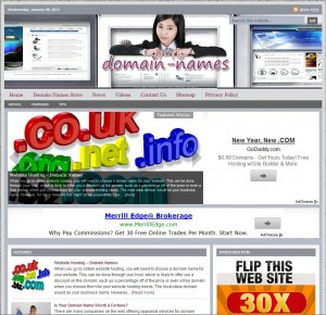 Domain Names Niche Website
