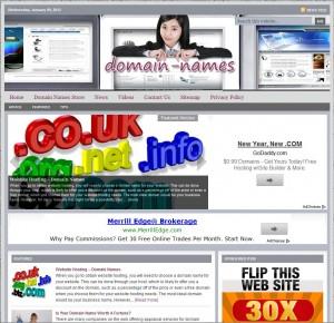 Domain Names Niche Website